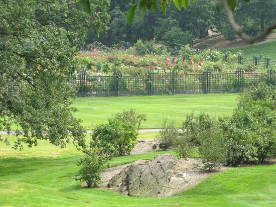 Rockefeller rose garden picture of new york botanical garden bronx tripadvisor for Bronx botanical garden free admission