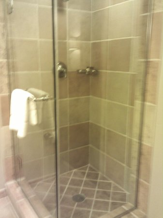 Sheraton Grand at Wild Horse Pass: Wish My Shower Looked Like This!