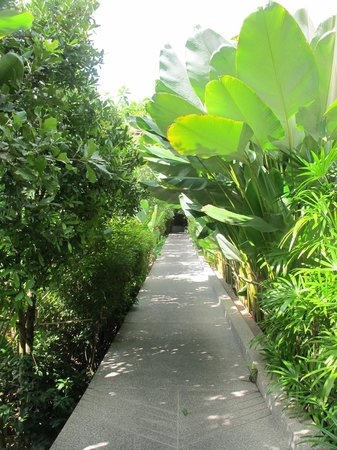 Siripanna Villa Resort & Spa: Lush tropical garden