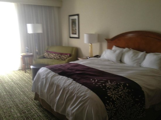Tampa Airport Marriott: Room