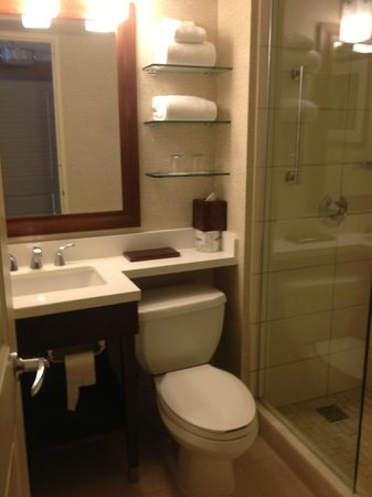 Tampa Airport Marriott: Bathroom