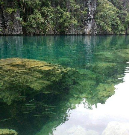 Centro Coron Bed and Breakfast: Water sooo clear @ Kayangan Lake