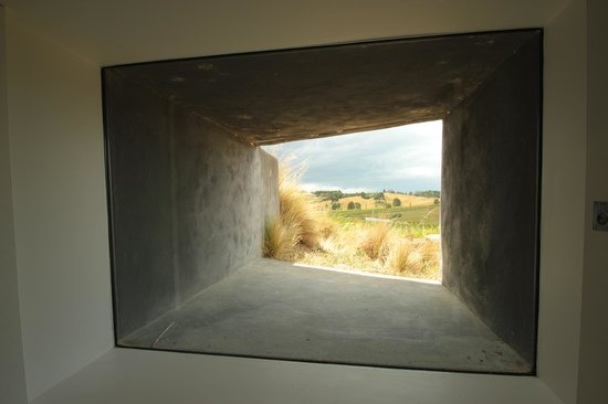 Wine Art and Wilderness: view
