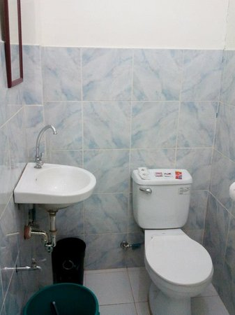 Centro Coron Bed and Breakfast: Standard Room Toilet.