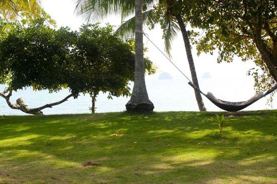 Koyao Island Resort: hammocks 