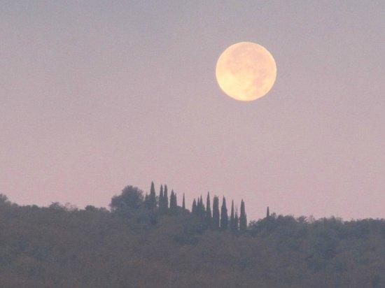 Agriturismo Centro Ippico della Berardenga: luna