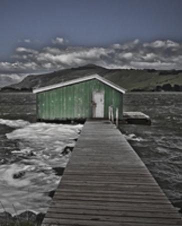 Dunedin & Beyond Photo Tours- Day Tours