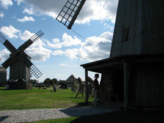 Leisi, Estonia: Windmill Park view