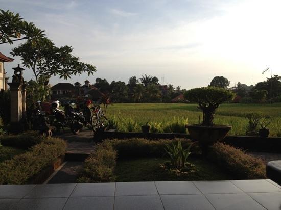 Kunang-Kunang Guesthouse: 受付側から見える風景。