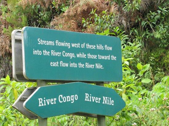Nyungwe Forest Lodge: Wasserscheide