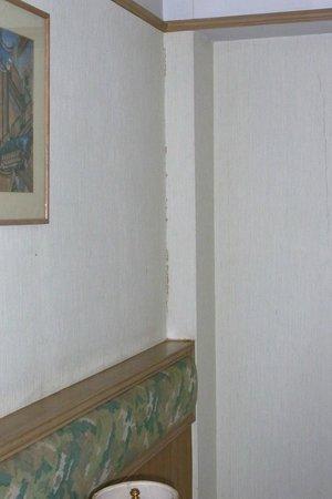 Lanna View Hotel: หยากไย่ ขี้จิ้งจก