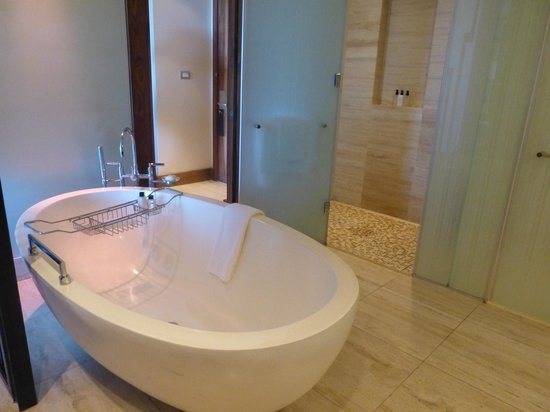 One&Only Cape Town: Bathtub and shower