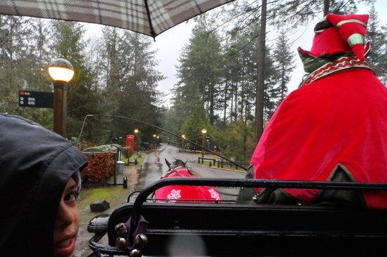 Center Parcs Longleat Forest: Carriage ride
