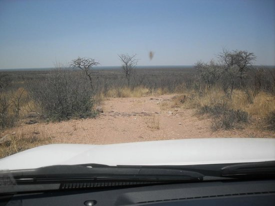 Kalahari Bush Breaks 사진