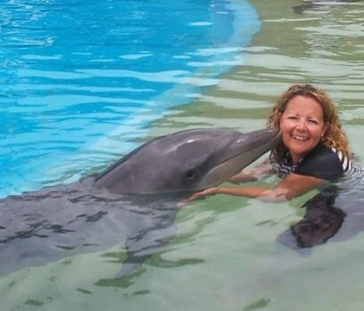 Pet Porpoise Pool - Dolphin Marine Magic: best birthday kiss ever. :)