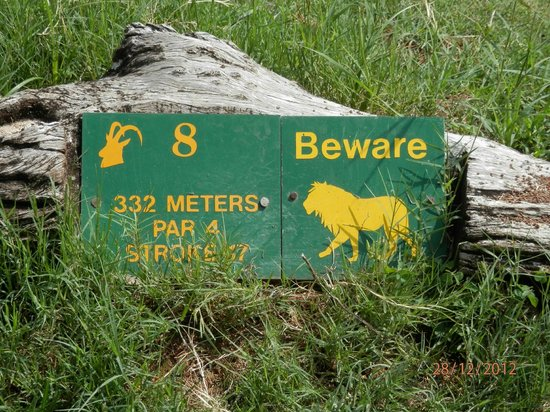 Skukuza, Afrika Selatan: Beware of Lion Sign on the eight tee