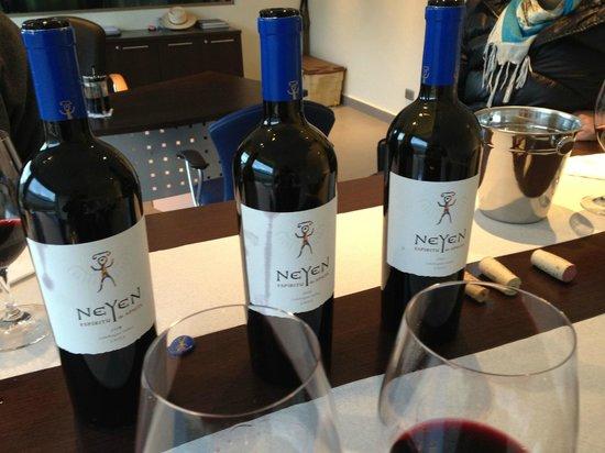 Neyen Winery