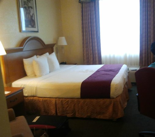 Best Western Fort Myers Inn & Suites: Bedroom