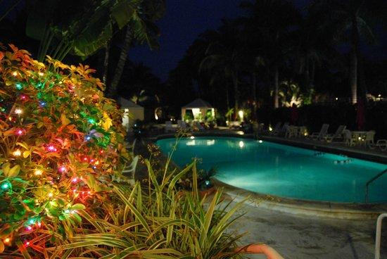 Richmond Hotel: Pool at night