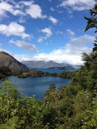 Eco Wanaka Adventures: Taken with iPhone