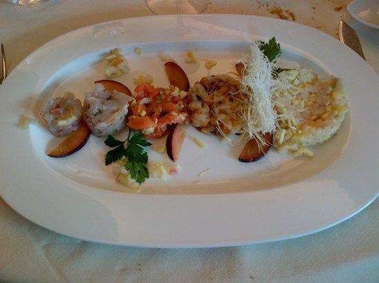 Samarate, Ιταλία: Tartare di pesce (5 tipi)