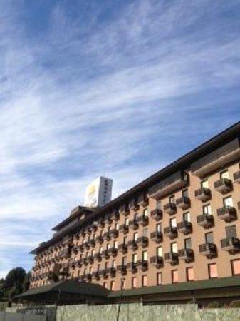 The Hedistar Hotel Narita: ホテル外観