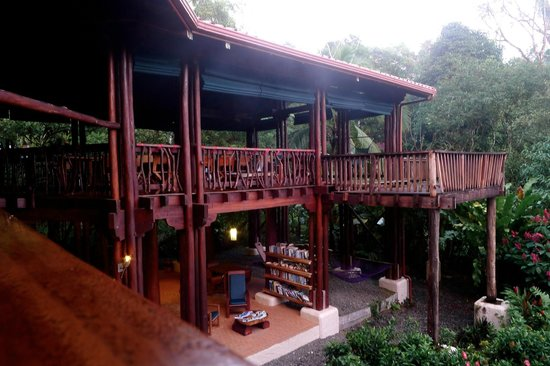 Playa Nicuesa Rainforest Lodge : Lodge