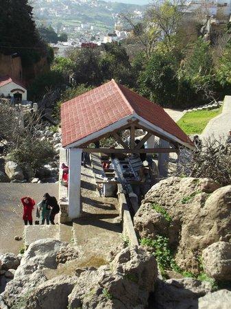 Dar Rass El Maa - Maison d'Hotes: lavoir de la source ras el maa