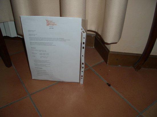 Hotel Bel Soggiorno: Scarafaggio
