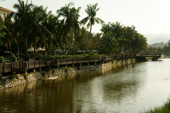 Resort Golden Palm: View of the lake and swimming pool area.