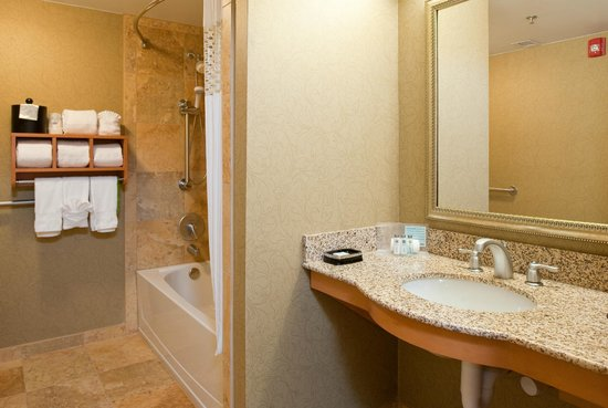 Hampton Inn Nashville / Brentwood I-65S: Accesible Bathroom