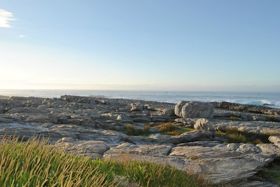 Hermanus Beach Club: View of beach / sea