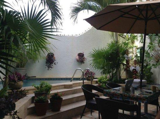 Casa Sirena Hotel: courtyard