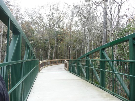Legacy Vacation Resorts-Palm Coast: bike trail over the swamp