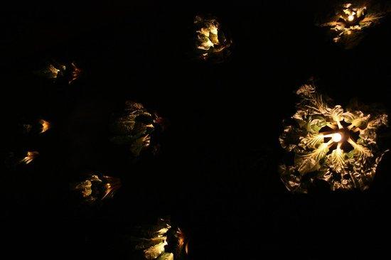 Majong: Le lampade a forma di Lattuga, fantastiche!