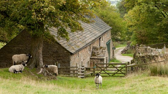 Dalehead Bunkhouse: Dalehead is in a remote idyllic setting