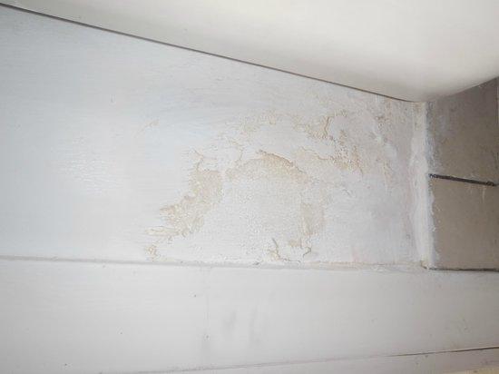 Sonesta Great Bay Beach Resort, Casino & Spa: mur dans la chambre plein de moisissure la peinture lève