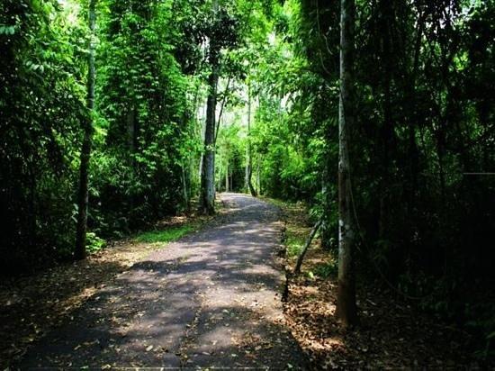Rio Branco: trilha