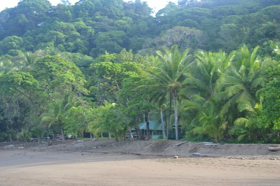 Punta Marenco Lodge: Property