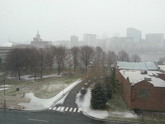 Kimpton Marlowe Hotel: View from room - Snow on Christmas