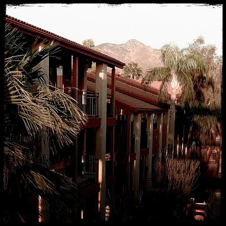 Red Lion Inn & Suites Tucson North Foothills: A view from my room
