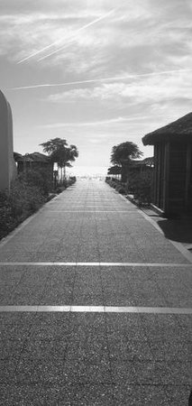 Maxx Royal Belek Golf Resort : View to the sea