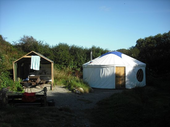 Trellyn Woodland Camping: Our private plot
