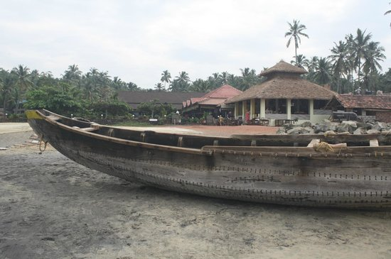 Palm Tree Heritage:                   fishing boats on the beach make a facinating site