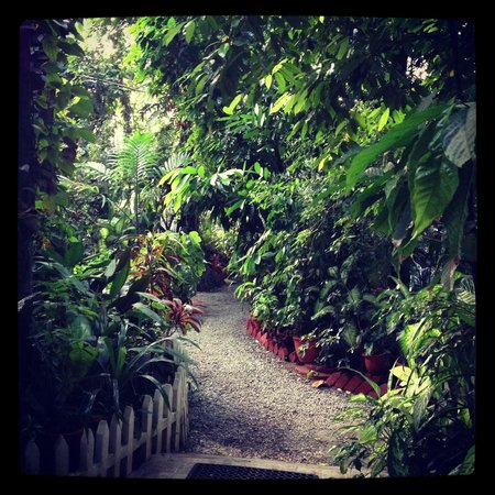 Green Woods-Bethlehem: the garden