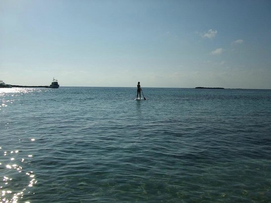 Bimini Big Game Club Resort & Marina: We went paddleboarding