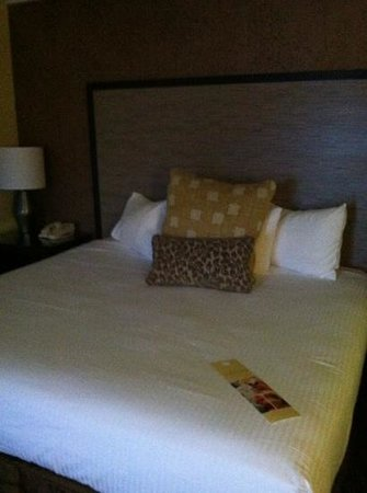 The Valley River Inn: comfy king size