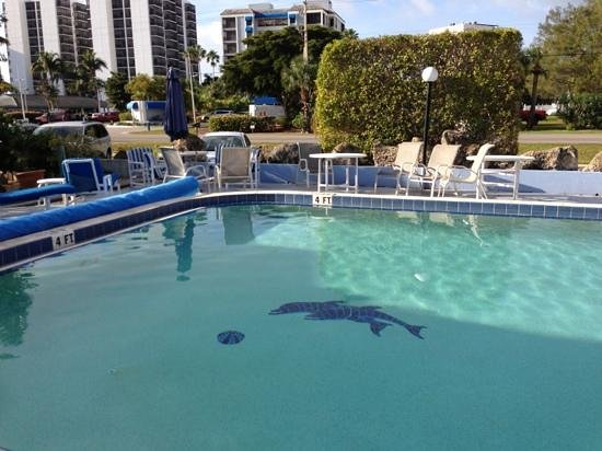 Dolphin Inn: Nice pool.