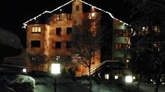 Hotel Karwendelhof: Vista albergo da dietro