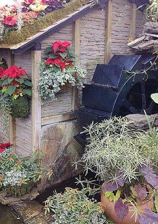 Allan Gardens Conservatory: Water Wheel